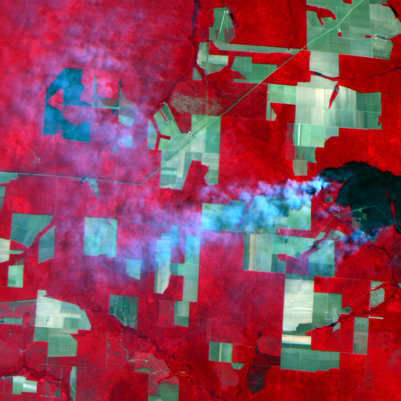 Satellite Image UK-DMC2 - Amazon Wildfire, Brazil