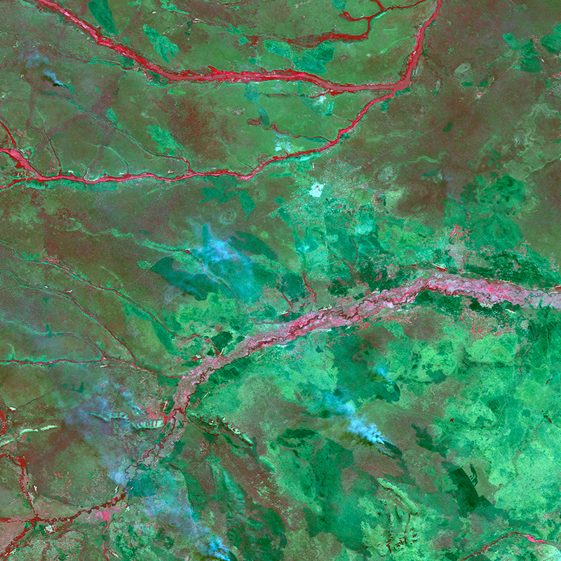 Satellite Image UK-DMC2 - Fires in the Democratic Republic of Congo