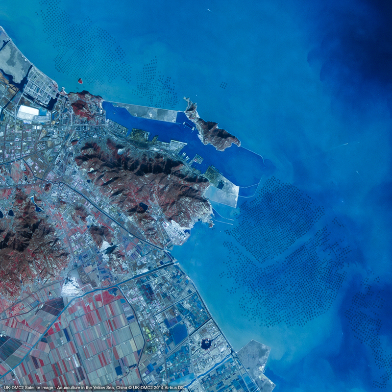 Image satellite UK-DMC2 - Aquaculture en mer Jaune, Chine