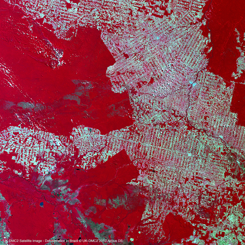 Image satellite UK-DMC2 - Déforestation au Brésil