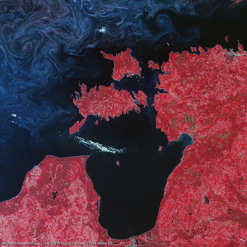 DMC Constellation Satellite Image - The Gulf of Riga