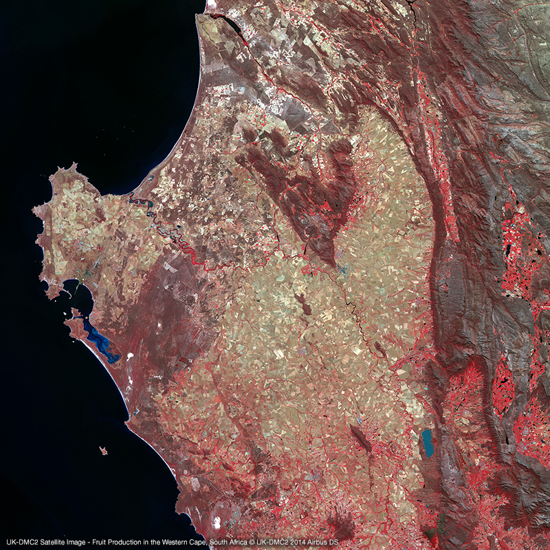 UK-DMC2 Satellite Image - Fruit Production in the Western Cape