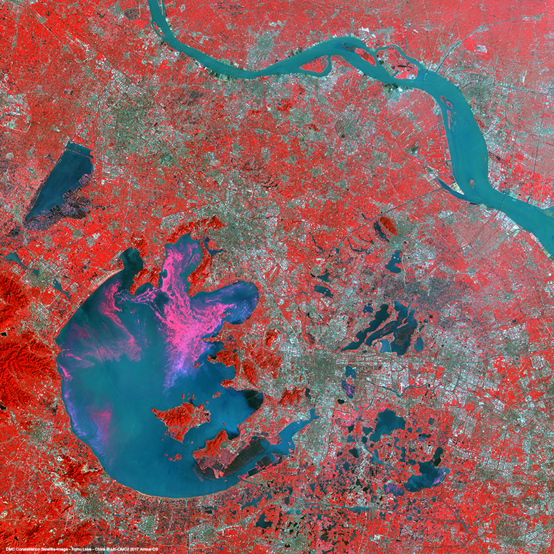 DMC Constellation Satellite Image - Algal Bloom - Taihu Lake