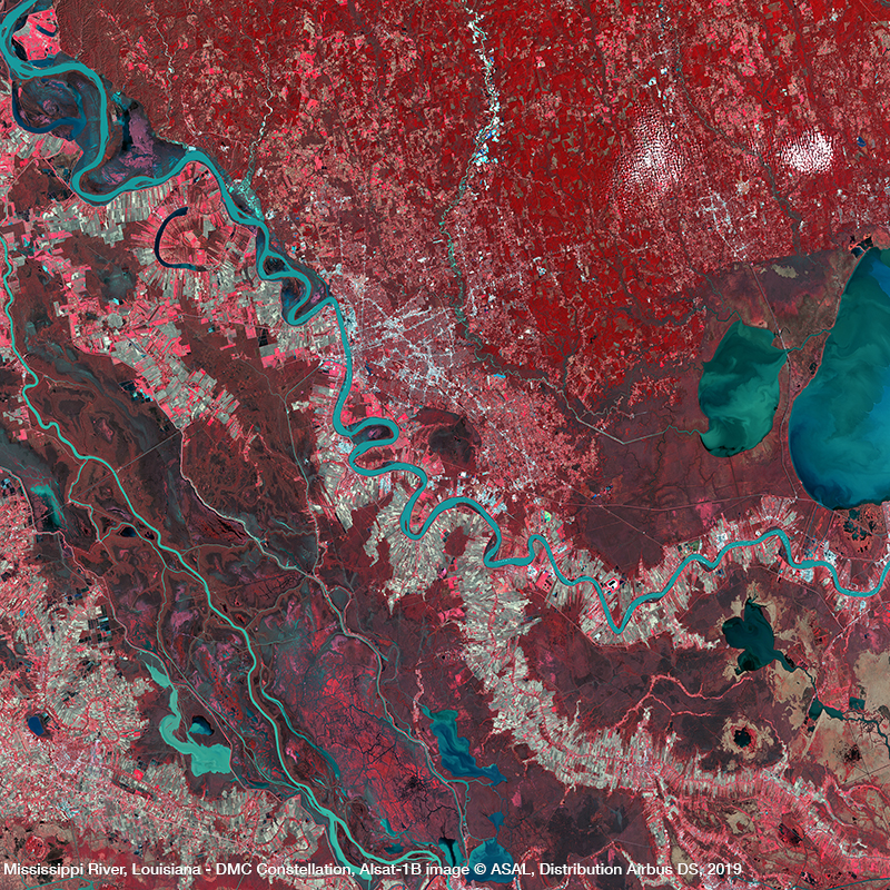 DMC Constellation Satellite Image NIR -  Louisiana, USA