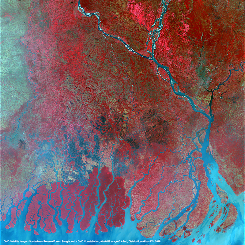 DMC Constellation Satellite Image - Sundarbans Reserve Forest, Bengladesh