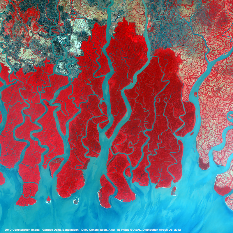 DMC Constellation Satellite Image - Ganges Delta, Bangladesh