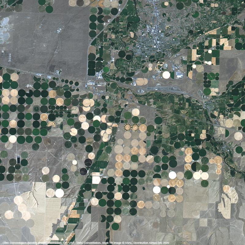 DMC Constellation - Crop fields in Oregon