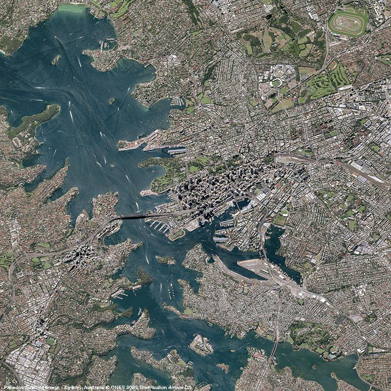 Pléiades - Sydney Harbour