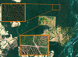 Satellite Image Analysis- Fazenda in Brazil