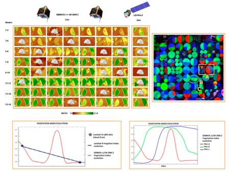 DMC-2 and DEIMOS-1 crop monitoring capacities
