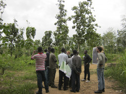 Ghanaian trainees and staff from the forestry commission