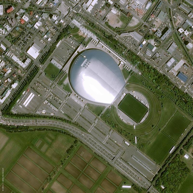 Japan RWC Sapporo Dome