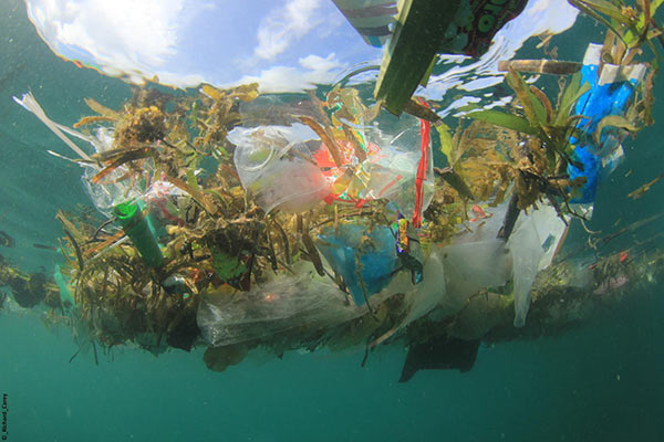 Ghost Nets Plastic waste floating ocean