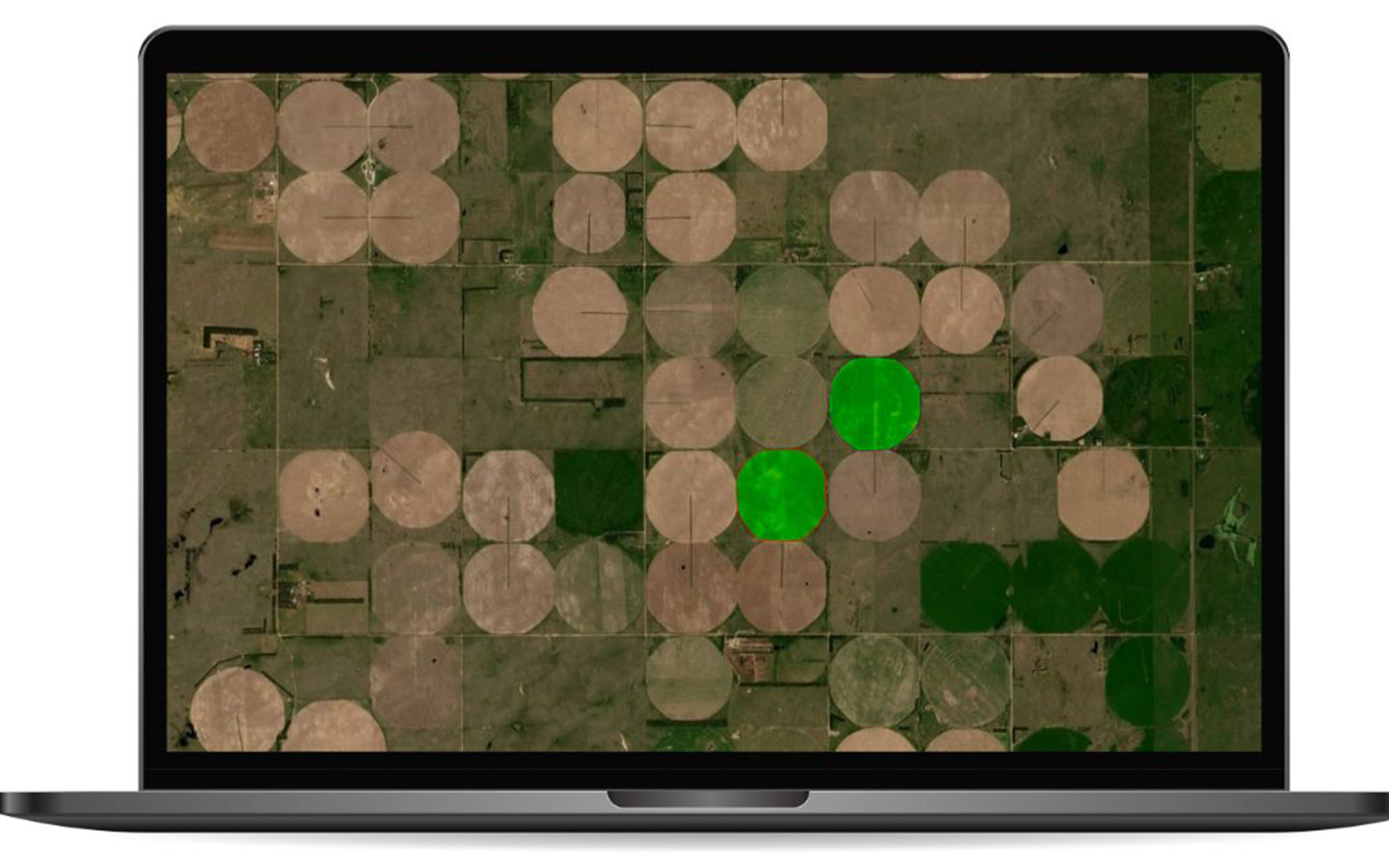 Precision agriculture insights on field level