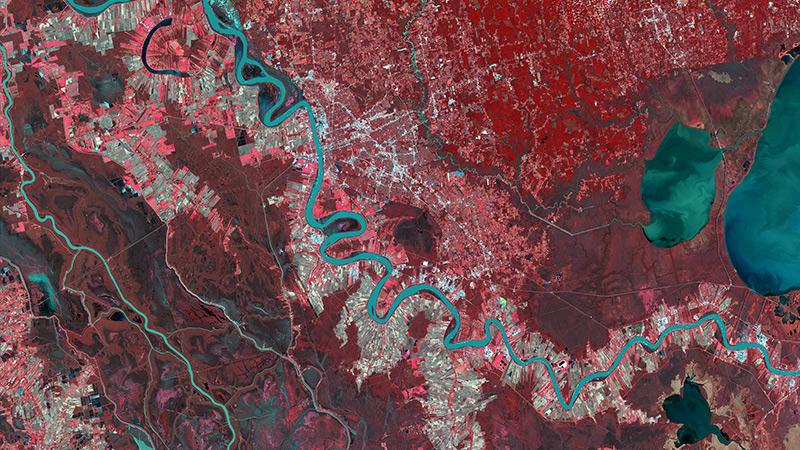 DMC Constellation Satellite Image NIR - Louisiana, USA