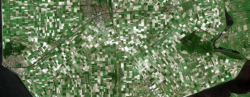 Airbus Satelite Imagery SPOT Optical Agriculture fields