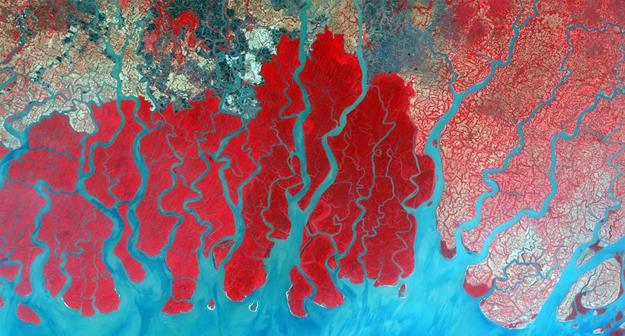 DMC Satellite Imagery, Ganges Delta in Bangladesh
