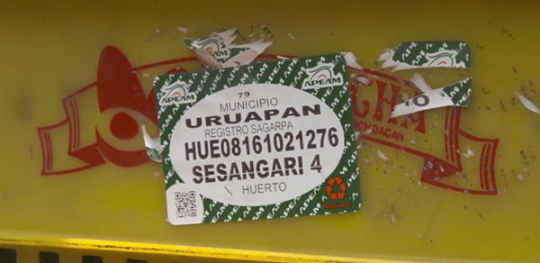 Box of avocados
