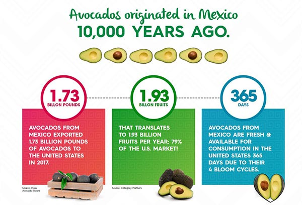 Eonomic facts and figures around avocados from Mexico