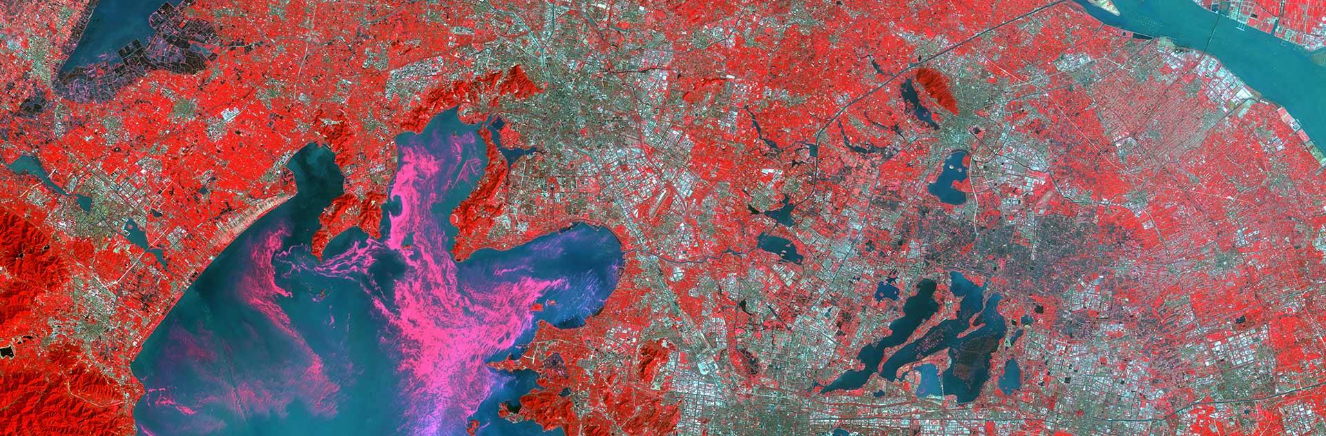 DMC Constellation Satellite Image - Algal Bloom - Taihu Lake
