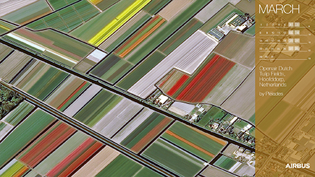 Calendar 2021 March - Pléiades - Openair Dutch Tulip Fields, Netherlands - Display Website