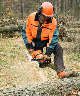 Forest worker cutting down trees close to railway lines